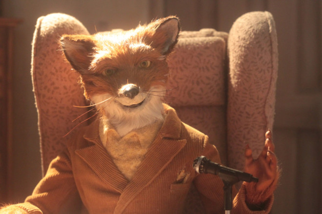 Agora em close, a elegância do Sr. Raposo.